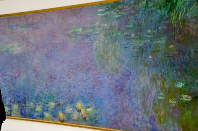 Monet's Nympheas series: a tribute to world peace at the Orangerie in Paris. Image credit: Adrian Scottow/Some rights reserved under the Creative Commons licens