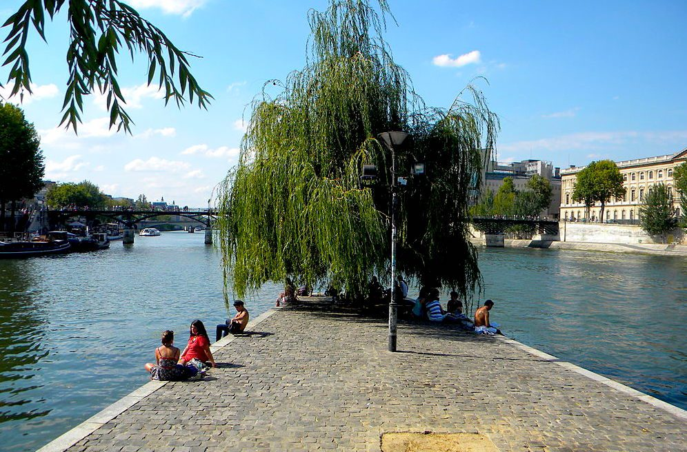 picnic on the seine river in paris