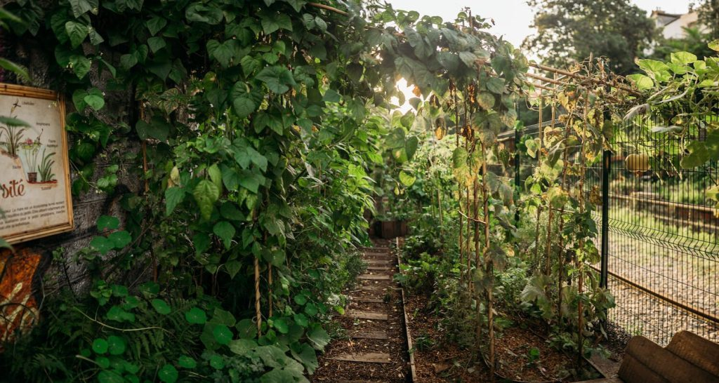 La REcyclerie: A true urban farm and community garden in Paris